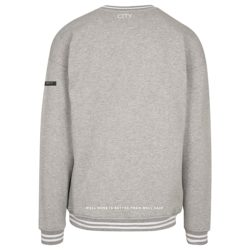 ZTC GREY SWEATER BACK